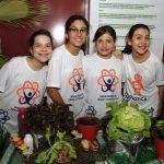 Atividades da SNCT em 2016 vão discutir a importância da qualidade dos alimentos para a população.