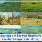 CNPq apoia pesquisas em biomas brasileiros