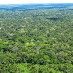 unidades de conservação no Brasil