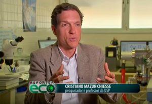Projeto apoiado pela CAPES faz descobertas em mar profundo