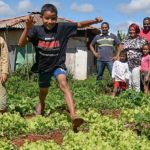 Finep Startup investe em plataforma que conecta agricultores familiares a compradores de alimentos